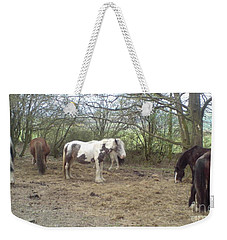 May Hill Ponies 1 Weekender Tote Bag by John Williams
