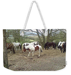May Hill Ponies 2 Weekender Tote Bag by John Williams