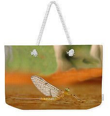 Mayfly Art Weekender Tote Bag