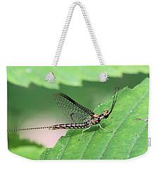 Mayfly Weekender Tote Bag