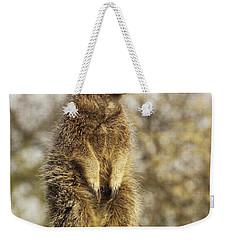 Meerkat On Hill Weekender Tote Bag by Pixel Chimp