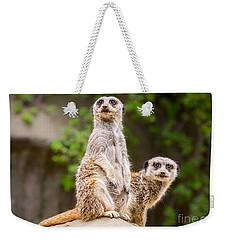 Meerkat Pair Weekender Tote Bag by Jamie Pham
