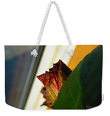 Weekender Tote Bag featuring the photograph Mellow Mourning by Brian Boyle
