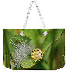 Weekender Tote Bag featuring the photograph Memories by Olga Hamilton