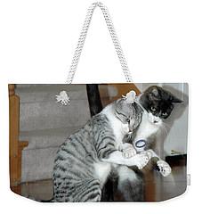 Meow Vows Weekender Tote Bag by LeeAnn McLaneGoetz McLaneGoetzStudioLLCcom