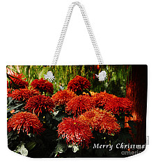 Weekender Tote Bag featuring the photograph Merry Christmas Greeting Card by Elaine Manley