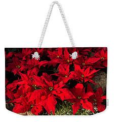 Merry Scarlet Poinsettias Christmas Star Weekender Tote Bag