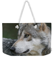 Mexican Wolf #6 Weekender Tote Bag by Judy Whitton