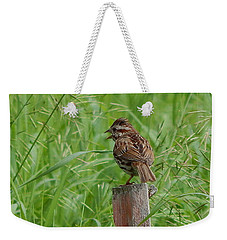 Mighty Sparrow Weekender Tote Bag