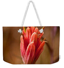 Miniature Indian Paintbrush Weekender Tote Bag
