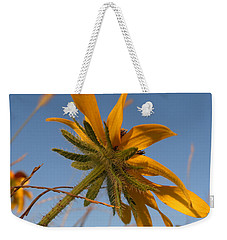 Weekender Tote Bag featuring the photograph Miss Daisy by Joseph Skompski