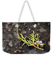 Weekender Tote Bag featuring the photograph Missing Christmas by Meghan at FireBonnet Art