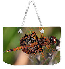 Mocha And Cream Dragonfly Profile Weekender Tote Bag by Kenny Glotfelty