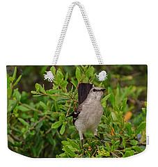 Mockingbird In Tree Weekender Tote Bag