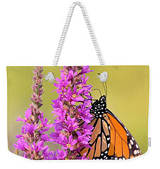 Weekender Tote Bag featuring the photograph Monarch Butterfly by Debbie Stahre