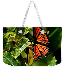 Viceroy Butterfly II Weekender Tote Bag
