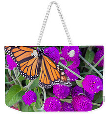 Monarch On Bachelor Buttons Weekender Tote Bag