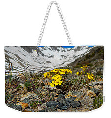 Blue Lakes Colorado Wildflowers Weekender Tote Bag by Dan Miller