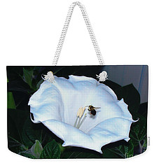 Weekender Tote Bag featuring the photograph Moon Flower by Thomas Woolworth