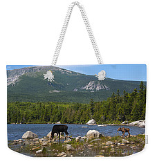Moose Baxter State Park Maine Weekender Tote Bag