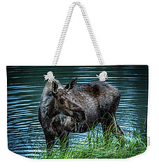 Moose In The Water Weekender Tote Bag