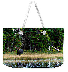 Moose Weekender Tote Bag by Ulrich Schade
