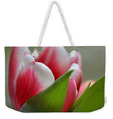 Morning Brilliance Weekender Tote Bag by Felicia Tica