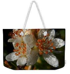 Morning Dew Weekender Tote Bag by Pamela Walton