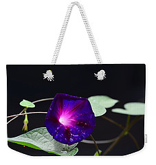 Morning Glory - Grandpa Ott's Weekender Tote Bag by Kathy Eickenberg