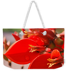 Weekender Tote Bag featuring the photograph Morning Jog by Miguel Winterpacht