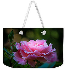 Weekender Tote Bag featuring the photograph Morning Light by Patricia Babbitt
