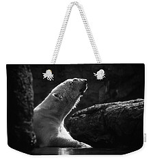 Weekender Tote Bag featuring the photograph Morning Sun by Ben Shields