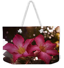 Morning Sunshine And Rain Weekender Tote Bag by Miguel Winterpacht