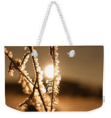 Weekender Tote Bag featuring the photograph Morning Walk by Miguel Winterpacht