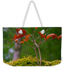 Moss Close-up With A Small Branch With Red Leafs Weekender Tote Bag by Vlad Baciu