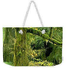 Weekender Tote Bag featuring the photograph Moss Draped Big Leaf Maple California by Dave Welling