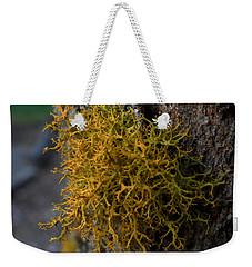 Moss On Tree Weekender Tote Bag by Pamela Walton