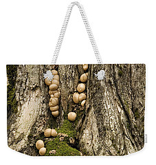 Weekender Tote Bag featuring the photograph Moss-shrooms On A Tree by Carol Lynn Coronios