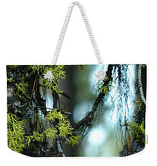 Mossy Playground Weekender Tote Bag by Meghan at FireBonnet Art