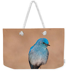Weekender Tote Bag featuring the photograph Mountain Bluebird by Cascade Colors
