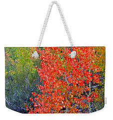 Mountain Color Weekender Tote Bag