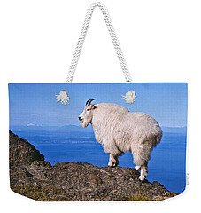 Weekender Tote Bag featuring the photograph Mountain Goat On Klahane Ridge by Jeff Goulden