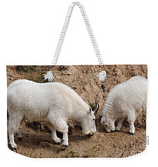 Weekender Tote Bag featuring the photograph Mountain Goats At The Salt Lick by Vivian Christopher