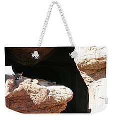 Weekender Tote Bag featuring the photograph Mountain Lion by David S Reynolds