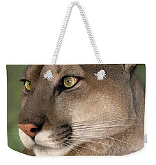 Weekender Tote Bag featuring the photograph Mountain Lion Portrait Wildlife Rescue by Dave Welling