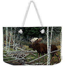 Weekender Tote Bag featuring the painting Mountain Monarch by Craig T Burgwardt