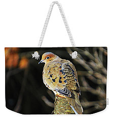 Mourning Dove On Post Weekender Tote Bag