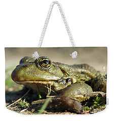 Weekender Tote Bag featuring the photograph Mr. Charming Eyes. Side View by Ausra Huntington nee Paulauskaite