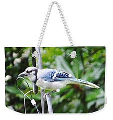 Mr Jay Weekender Tote Bag by Lizi Beard-Ward