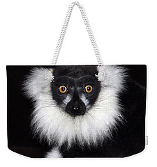 Weekender Tote Bag featuring the photograph Mr Lemur by Terri Waters
